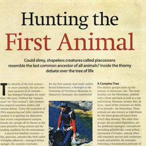 hunting the first animal